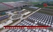 渭河现代农业示范园区:设施果树生产龙头企业