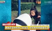 黄磊老婆孙莉带三娃出游 多多推弟弟嘟嘴索吻