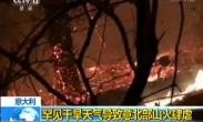 意大利:罕见干旱天气导致意北部山火肆虐