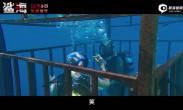 电影《鲨海》曝终极预告 长腿姐妹身陷嗜血群鲨绝地逃生