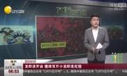 龙虾店开业 邀四百斤小龙虾走红毯