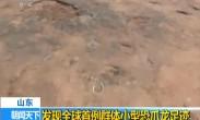 山东:发现全球首例群体小型恐爪龙足迹