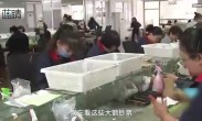 公交投币箱频现百元大钞:9天超万元