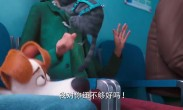 """《爱宠大机密2》曝光全新预告 """"嗨皮萌宠""""演绎搞笑成长路"""