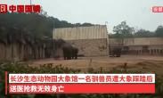 长沙动物园大象踩死驯养员 官方:涉事大象重两吨,疑为发情导致[高清版]