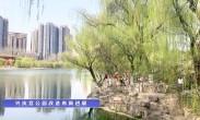 兴庆宫公园改造有新进展