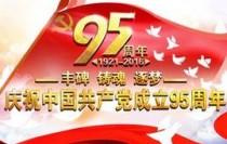 中国共产党建党95周年