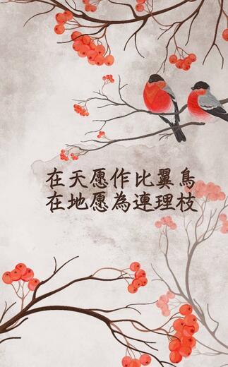 含有鸟名的诗句