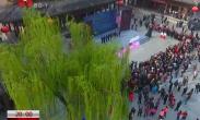 春满中国·醉西安:三月樱花烂漫 感悟诗意长安