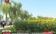 青海游客:西安的绿化很不错