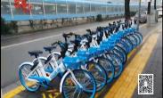 """20190228记者调查:""""禁投令""""后 部分共享单车再投放市场"""