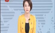 """""""西安年 最中国""""大唐芙蓉园 精彩不间断"""
