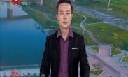 西安市国际专家顾问团访问空港新城 为空港发展建言献策
