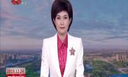 中国年·看西安 央视庚子年春节节目再度聚焦西安