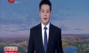 中国年·看西安 大唐芙蓉园新春大潮会带游客梦回大唐