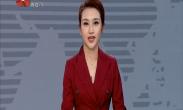 中国年·看西安 大唐芙蓉园新春灯会水陆花灯争奇斗艳