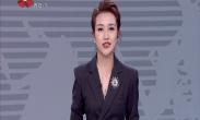 中国年·看西安 新城区十二生肖剪纸展 民俗年货年味浓