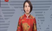 年味年韵中国年 中国民间艺术展迎新年