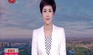 """中国年 看西安 世界最高花灯""""孔雀迎宾""""将亮相西安"""