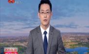 中国年·看西安 大唐芙蓉园新春大潮会上线 世界最高花灯亮相
