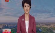 """媒体看西安:央视 新华网聚焦""""中国年·看西安""""系列文化旅游活动"""