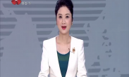 """中国年·看西安 2020新城区""""万福送万家""""写送春联"""
