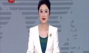 """""""中国年·看西安""""特色主题航班盛大起航 万米高空盛邀宾客西安""""过大年"""""""