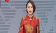 """庚子年2020春节期间""""中国年·看西安""""系列文化旅游活动启动"""