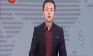 """央媒关注:""""中国年·看西安""""系列文化旅游活动"""