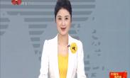 """""""中国年·看西安""""系列活动保障工作启动"""