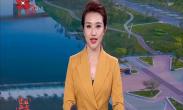 西咸新区举办2020年迎春团拜会