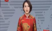 中国年 看西安 来了还想来