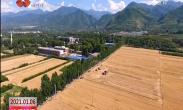 原点快讯:2020年西安粮食稳产丰收