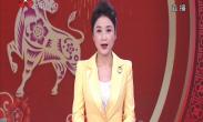 """九曲黄河闹新春——济南  佳""""藕""""天成美名扬"""