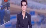 《中国红·英雄城》 张人亚:第一部党章守护人