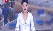 新城区举行庆祝中国共产党成立100周年主题党日活动